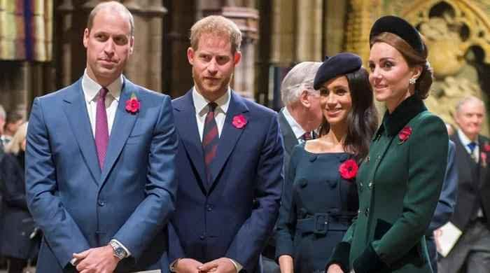 Prince William, Harry cannot reconcile until they split from Kate Middleton, Meghan Markle